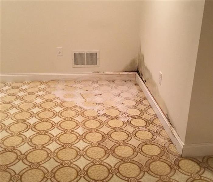carpeted hallway with water damage