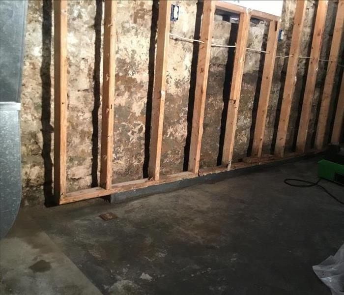 Mold Remediation in Beaver County Basement